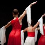 Le Jeune Ballet - 2011-11-05-Saint-Romain